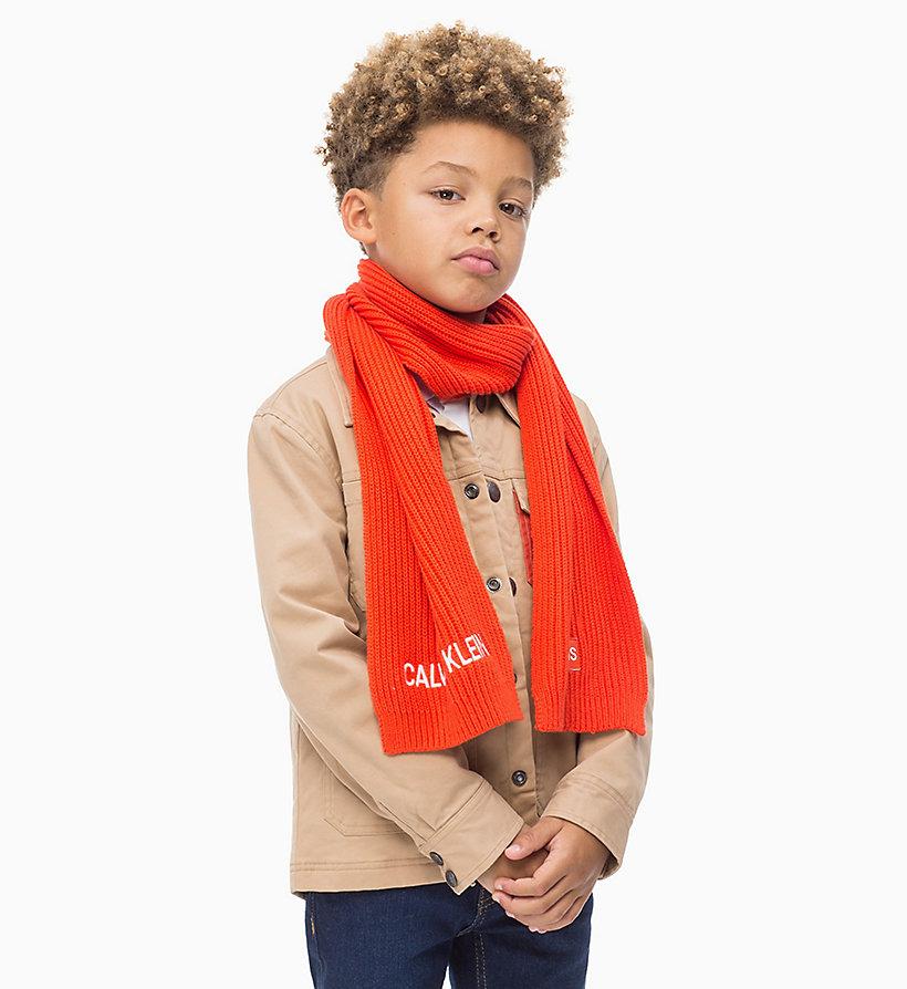 Calvin Klein - Organic Cotton Scarf - 3