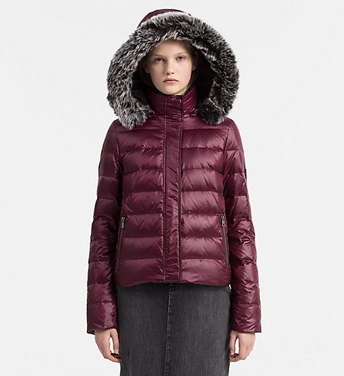 Hooded Down Jacket - FIG - CALVIN KLEIN JEANS OUTERWEAR - main image