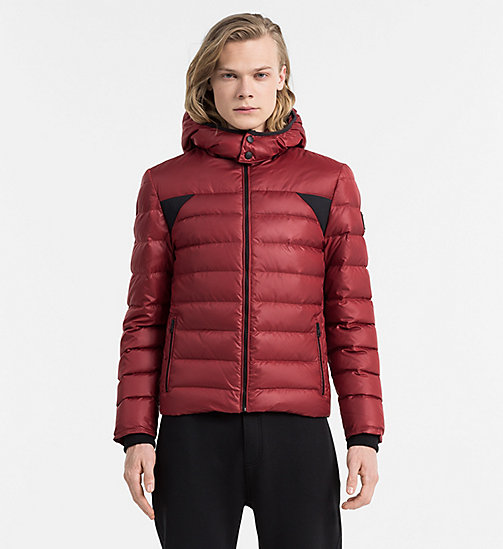 Hooded Down Jacket - MERLOT - CALVIN KLEIN JEANS CLOTHES - main image