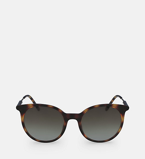 CALVINKLEIN Oversized Sunglasses CK3208S - TORTOISE -  SHOES & ACCESORIES - main image