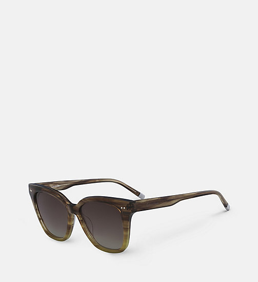 CALVIN KLEIN Angular Sunglasses CK4359S - STRIPED BROWN - CALVIN KLEIN SUNGLASSES - detail image 1