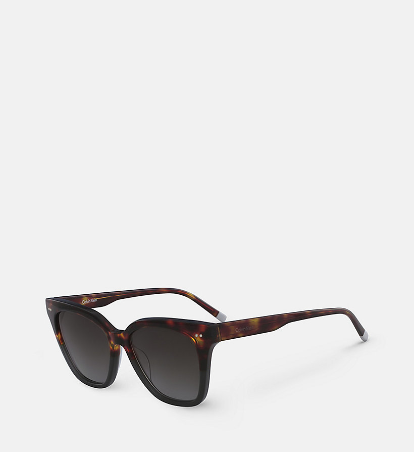 CALVIN KLEIN Angular Sunglasses CK4359S - STRIPED BROWN - CALVIN KLEIN WOMEN - detail image 1