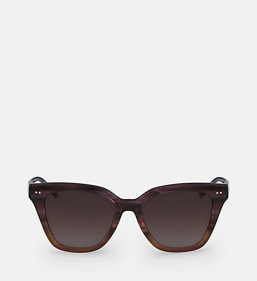 CALVINKLEIN Angular Sunglasses CK4359S - STRIPED PURPLE BROWN - CALVIN KLEIN SUNGLASSES - main image