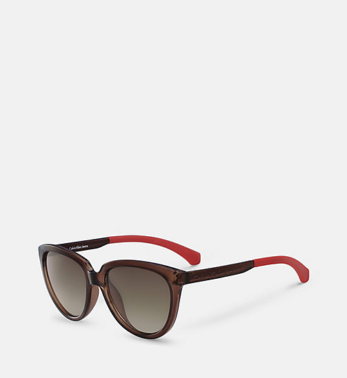 CALVIN KLEIN JEANS Cat Eye Sunglasses CKJ802S - MATTE CRYSTAL BROWN - CALVIN KLEIN JEANS ACCESSORIES - detail image 1