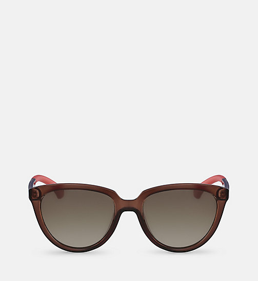 CALVIN KLEIN JEANS Cat Eye Sunglasses CKJ802S - MATTE CRYSTAL BROWN - CALVIN KLEIN JEANS SUNGLASSES - main image