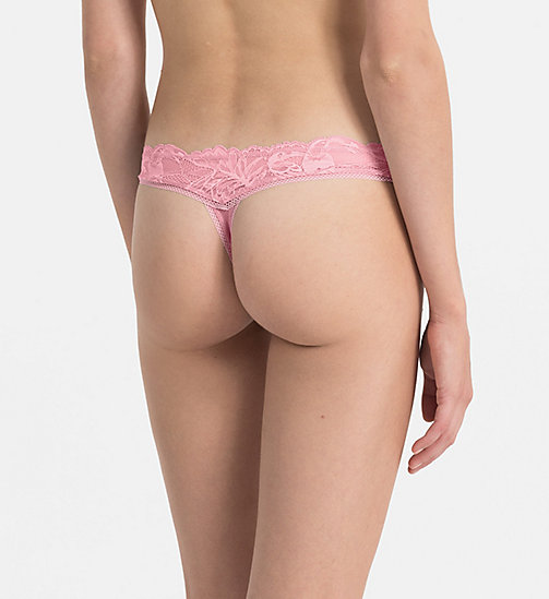 CALVINKLEIN String - Bird Lace - PENELOPE - CALVIN KLEIN SHOP BY SET - main image 1