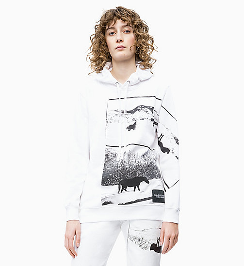 CALVIN KLEIN JEANS Andy Warhol Photo Art Hoodie - BRIGHT WHITE - CALVIN KLEIN JEANS ANDY WARHOL - main image