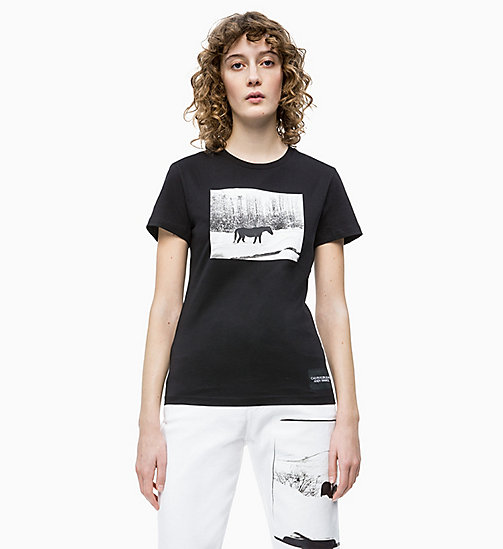 CALVIN KLEIN JEANS Andy Warhol Photo Art T-shirt - CK BLACK - CALVIN KLEIN JEANS ANDY WARHOL - main image