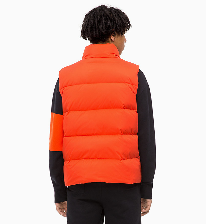 CALVIN KLEIN JEANS Quilted Down Gilet - SURF THE WEB - CALVIN KLEIN JEANS MEN - detail image 1