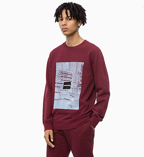 CALVIN KLEIN JEANS Printed Sweatshirt - TAWNY PORT - CALVIN KLEIN JEANS The New Off-Duty - main image