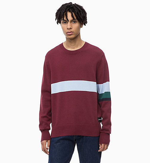 CALVIN KLEIN JEANS Sweater mit Kontraststreifen-Muster - TAWNY PORT - CALVIN KLEIN JEANS The New Off-Duty - main image