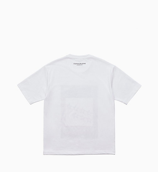 CALVIN KLEIN JEANS Landscape Stars T-shirt - BRIGHT WHITE / PAINTED BARN - CALVIN KLEIN JEANS CLOTHES - detail image 1