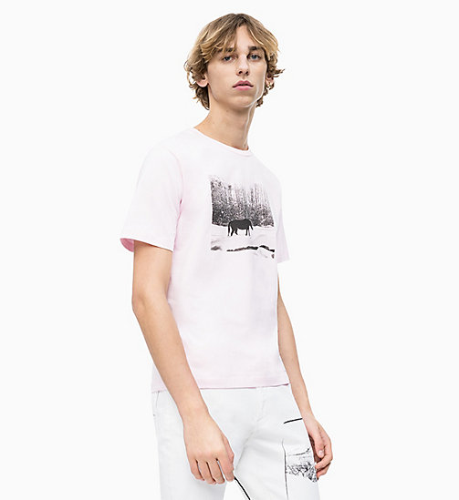 CALVIN KLEIN JEANS Andy Warhol Photo Art T-shirt - CHERRY BLOSSOM - CALVIN KLEIN JEANS ANDY WARHOL - main image