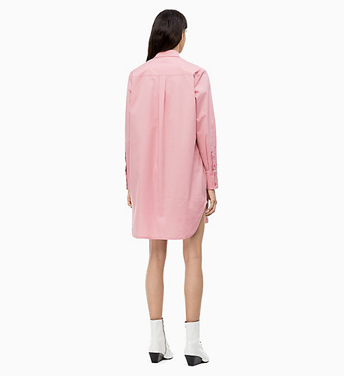 CALVIN KLEIN Cotton Shirt Dress - BLUSH - CALVIN KLEIN CALVIN KLEIN WOMENSWEAR - detail image 1